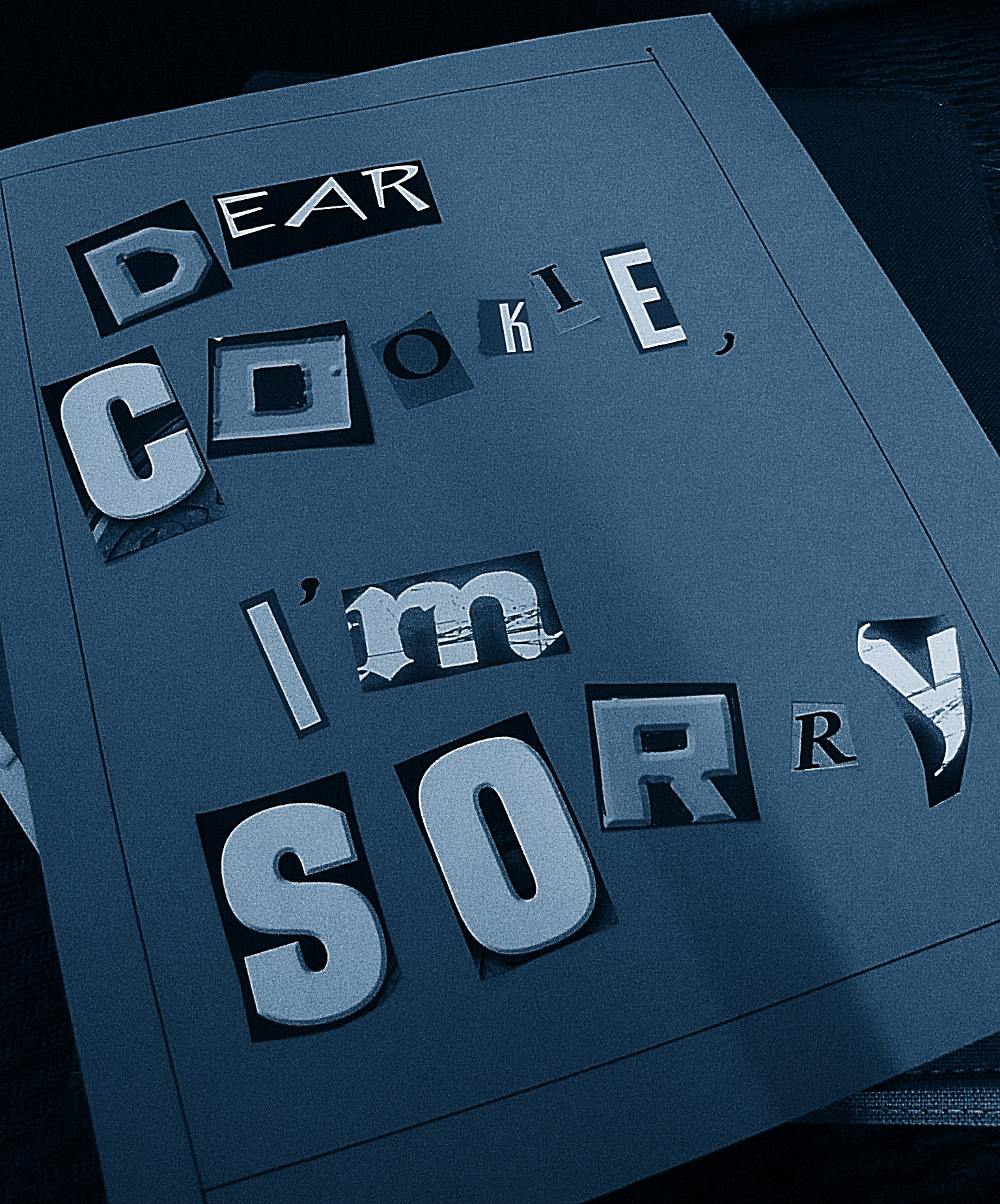 Dear Cookie, I'm sorry...